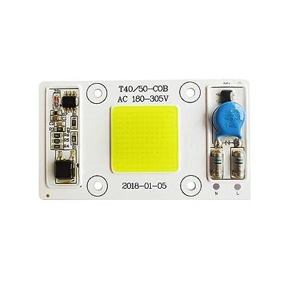 Tesfish 50W LED Motor De Luz Blanca 220V COB Chip Entrada Integrado Inteligente IC DRIVER Para Foco: Amazon.es: Iluminación