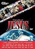 ''JESUS'' DVD - 24 LANGUAGE MINISTRY GIVE-AWAY OUTREACH SPECIAL 100-PACK