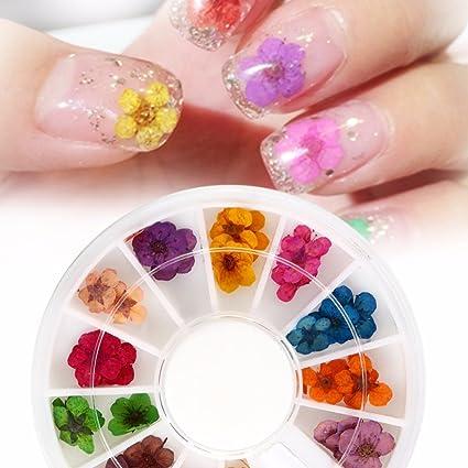 Qimeiya 3d Nail Art Decorazione Unghie Fiori Secchi Manicure