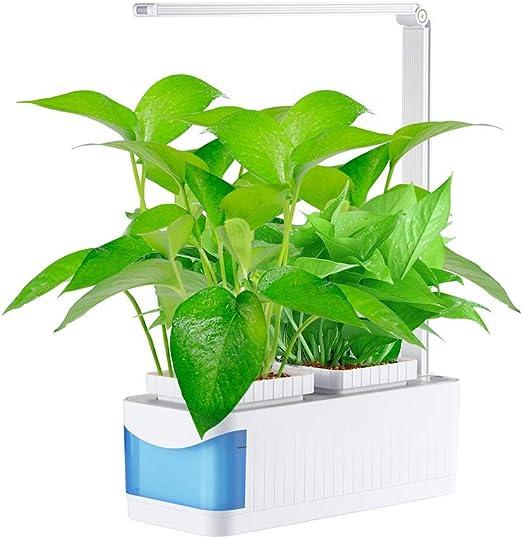 Jardín huerto de Interior Smart Garden – Huerto de Interior 100 ...