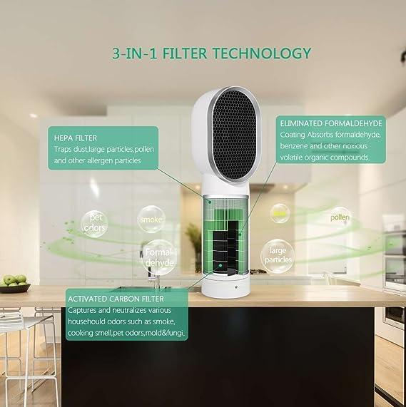 Purificador de aire Hepa – Ionizador de aire, filtro de aire, filtro de carbón activo aniónico para personas alérgicas al humo, al polvo y a otros ...