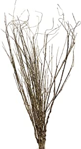 Pursuestar 10Pcs 30inch Lifelike Dry Willow Branches Bendable Iron Wires Artificial Plant Stub Stem DIY Craft Wedding Home Room Office Hotel Hall Decoration