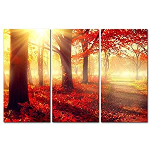 3 Pieces Modern Canvas Painting Wall Art The Picture For Home Decoration Autumn Fall Scene Beautiful Maple Trees And Leaves Foggy Forest In Sunny Rays Landscape Forest Print On Canvas Giclee Artwork For Wall Decor