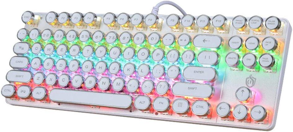 WANGJIANGLI Mechanical Keyboard RGB Backlit Gaming Keyboard 87 Key Computer Illuminated Gaming Keyboard Blue Switches PC Gaming Keyboard,Black