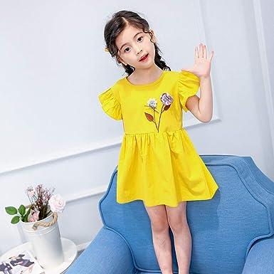 Amphia ubranie dla niemowląt - Dziewczynka z falbankami Wyszywane kwiaty Sukienka dla księżniczki Ubranie: Odzież