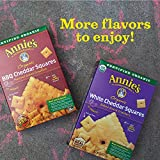 Annie's Organic Cheddar Squares Baked Snack