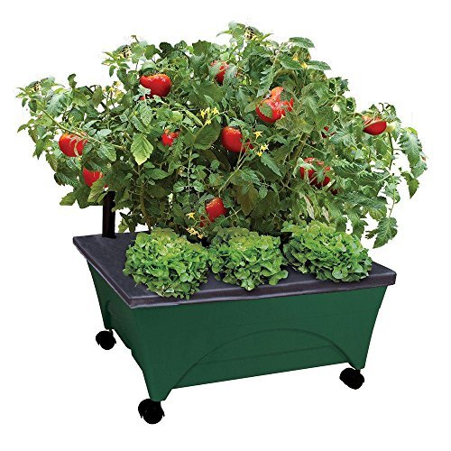 24.5 In. X 20.5 In. Patio Raised Garden Bed Kit with Watering System and Casters in Green