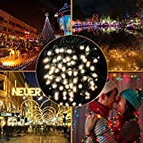 [Super Sturdy] MZD8391 Upgraded Christmas String Lights Outdoor Indoor For Wedding, Party, Patio, Porch, Backyard, Garden Decoration, Warm White, 66FT 200 LEDs
