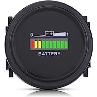 Ejoyous Indicador de Nivel de Batería Digital LED