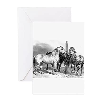 Amazon Cafepress Antique Drawing Of Three Horses Greeting