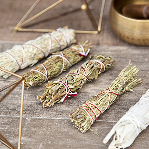 Beverly Oaks Smudging Bundle, Perfect for Rituals, Meditation, Protection and Incense - Features Five Sages (Blue, California White, Black, Shasta and Desert) - Sage Combo Pack
