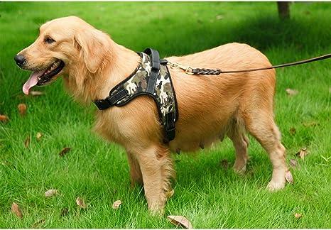 Masayume Arnés para perro casero, ajustable, retráctil al aire ...