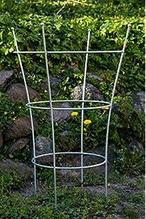 Rankbogen f/ür Hochbeetbreite von 72cm bis 75cm prima terra Rankhilfe Edelrost Pflanzenranke Rankhilfenbreite 30 cm Rankgitter