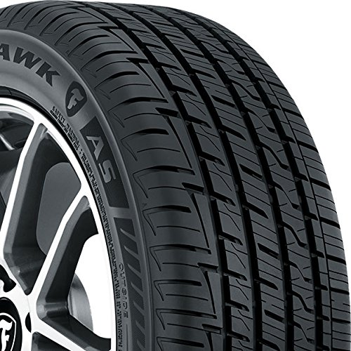 Firestone Firehawk AS All-Season Radial Tire - 195/65R15 91H