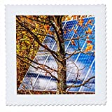 3dRose Alexis Photo-Art - Objects - Blue solar power panel in the autumn forest. Photosynthesis - 20x20 inch quilt square (qs_270321_8)
