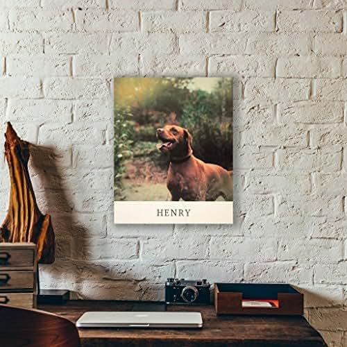 Amazon Pet Portrait Memorial Modern Style Photo Printed On