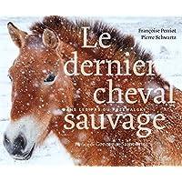Le dernier cheval sauvage - Dans les pas du Przewalski