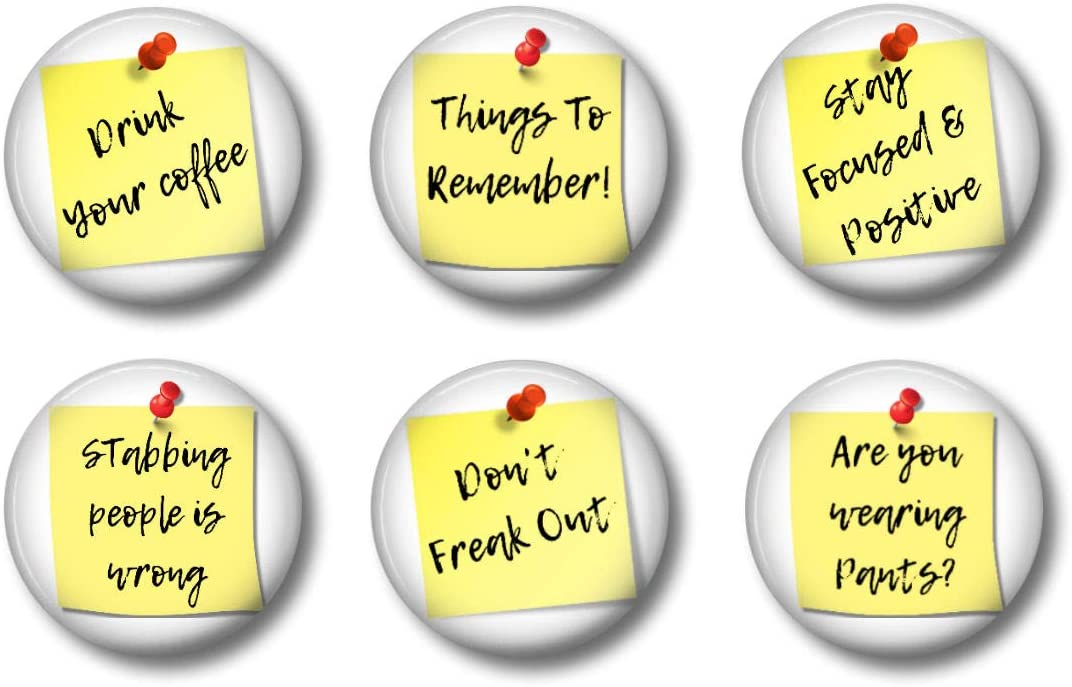 THINGS TO REMEMBER Magnets - Snarky Advice - White Elephant Gift Adult Achievement Awards - Funny for Office Party, Cute for Teen Lockers, Whiteboard or Fridge