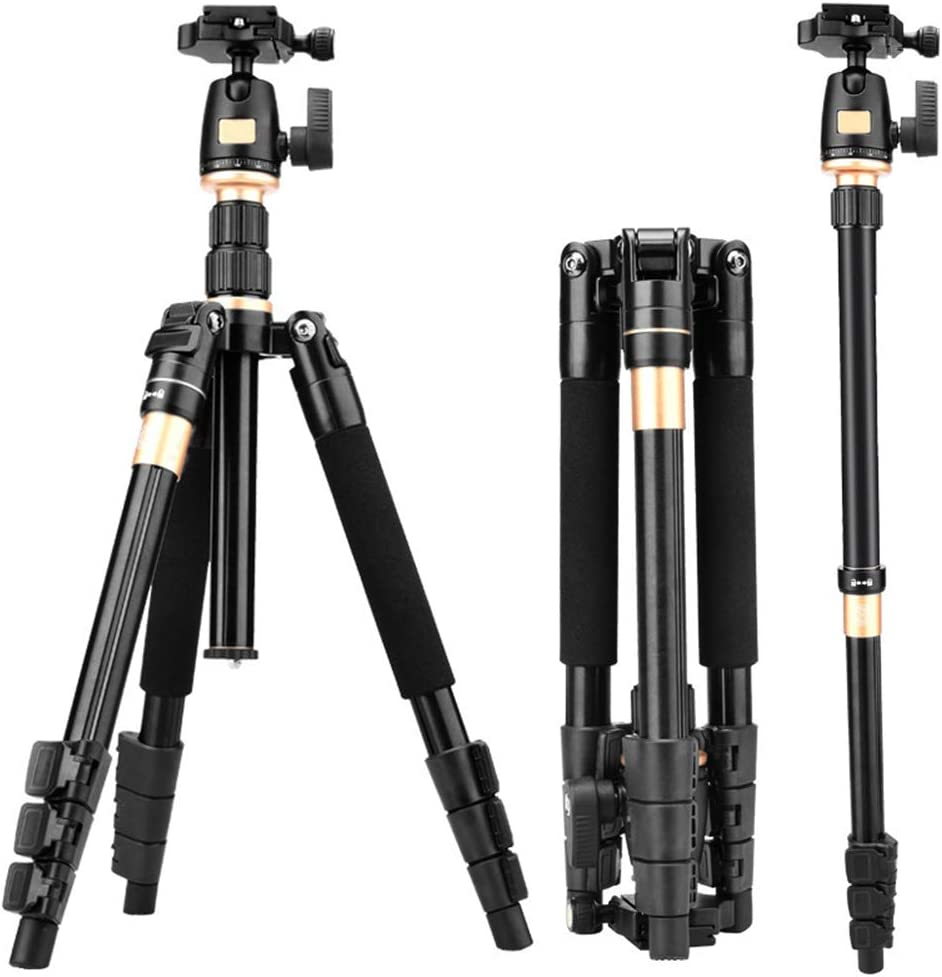 Lightweight and Compact Aluminum Camera Tripod with 360 Panorama Ball Head Quick Release Plate for Travel and Work Portable Black Goodvon SLR Tripod