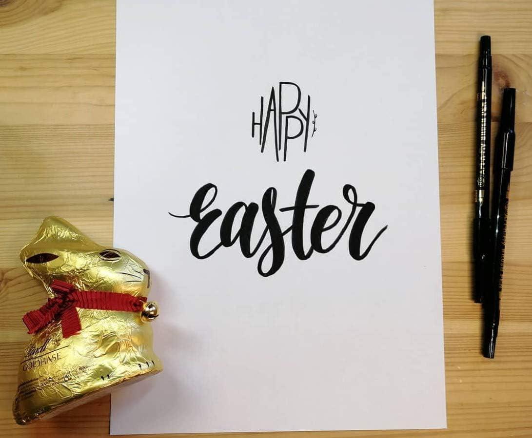 Schwarz 2er Set Pinselstift Set mit 2 Spitzen f/ür Handlettering Kalligraphie Stift Doppelseitige Zeichenstifte Pinselstift-Set D/ünne und Dicke Spitze Tuschestift Aquarell-Marker zum Zeichnen