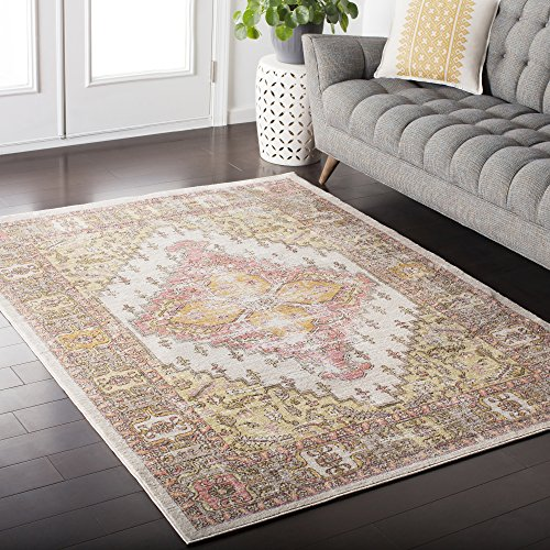 Lancelot Coral and Beige Updated Traditional Area Rug 5'3