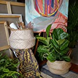 dufmod Large Natural Woven Seagrass Tote Belly