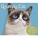 Grumpy Cat Year-in-A-Box (2019)