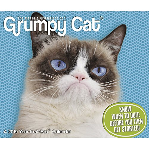 Grumpy Cat Year-in-A-Box (2019) from ACCO Brands
