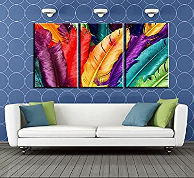 3 Piece Home Decoration Modern Canvas Wall Art Colored Feathers Oil Painting Picture Print On Canvas For Bedroom No Frame,painting wall