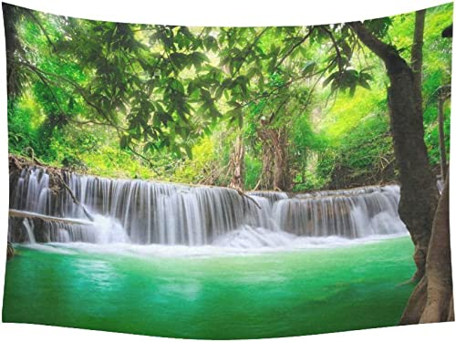 INTERESTPRINT Scenery Wall Art Home Decor, Waterfall Mountain in Forest Jungle Landscape Nature Tapestry Wall Hanging Art Sets 80 X 60 Inches