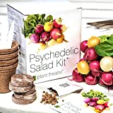 Psychedelic Salad Kit by Plant Theatre – 5 Fantastic Salad Vegetables to Grow – Great Gift