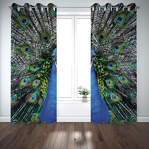 SCOCICI Grommet Blackout Window Curtains Drapes [ Peacock,Magnificent Peacock Portrait Vibrant Colorful Feathers Photo Pattern,Blue Green Brown] Living Room Bedroom Kitchen Cafe