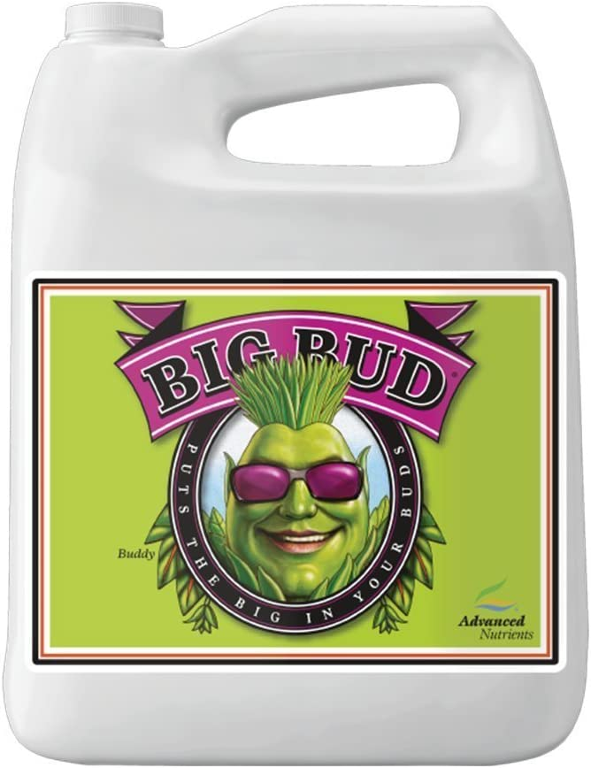 Advanced Nutrients GL525050-12 Big Bud Liquid Fertilizer