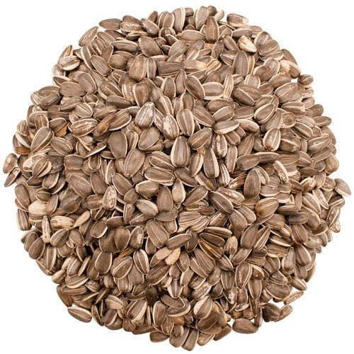 Grey Striped Sunflower Seeds 5 Lb