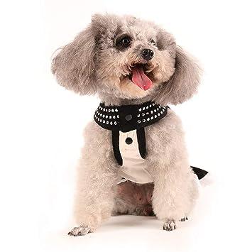 Amazon.com: Jim-Hugh - Vestido de lujo para mascotas, perros ...