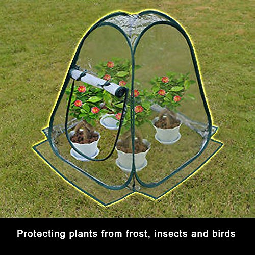 Miniature Greenhouse Kit Portable Pop Up Backyard Garden Shelter House Extends Plants Growing Season Vegetables Herbs Small Indoor Outdoor Gardening Flower Pot Cover Insect Frost Birds Protector Tent by Indipartex
