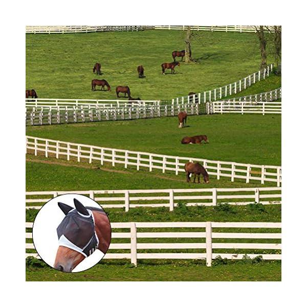 Jackallo Maschere per Cavalli Maschera Traspirante per Cavalli Maschera per Cavalli Antizanzara Maschera Traslucida con… 5 spesavip