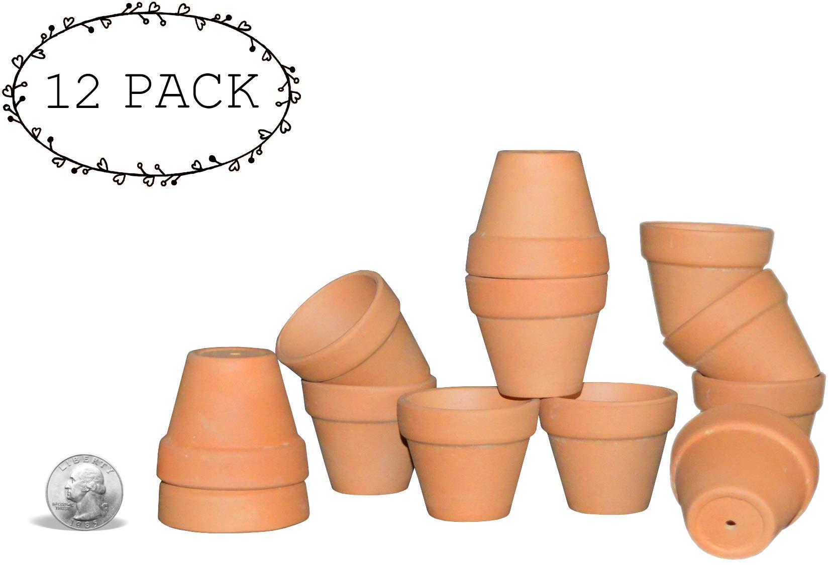 My Urban Crafts Small Terra Cotta Pots - Mini Clay Flower Pots - Great For Succulent & Cactus Nursery Planter, DIY Craft Projects, Wedding and Party Favors - 1 x 1.5 Inches (Set of 12)