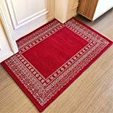 LIUXINDA-DT Modern household carpet, door carpet, living room carpet, tea table carpet, antiskid carpet, absorbent carpet,50 x (x 80cm 19.6 31.4 ''),红色