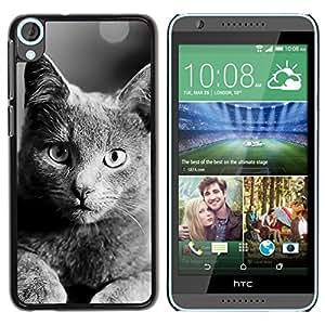 EJOY---Cubierta de la caja de protección la piel dura para el / HTC Desire 820 / --Británico de Pelo Corto