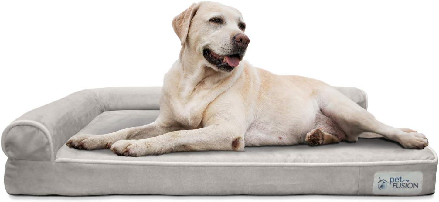 PetFusion Cama de Espuma viscoelástica para Perro (Mejor salón) con Forro Impermeable y Funda extraíble (Grande 91 x 71 x 15 cm). Fundas de Repuesto y Mantas también Dispon