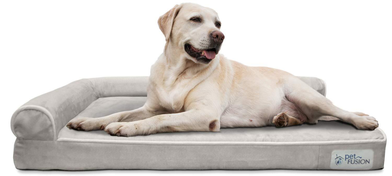 PetFusion Cama de Espuma viscoelástica para Perro (Mejor salón) con Forro Impermeable y Funda extraíble (Grande 91 x 71 x 15 cm).