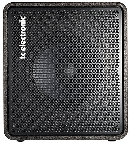 TC Electronic RS115 1x15 400W Bass Cabinet Repack with Full Alto Music Warranty! (Best 15 Bass Cabinet)