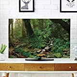 """iPrint LCD TV Cover Multi Style,Landscape,Raincompatibleest Trees and Fresh Grass in Nepal Jungle Wildlife Nature Tropical Photo,Green Brown,Customizable Design Compatible 55"""" TV"""