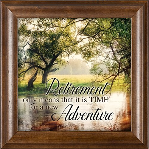 Elanze Designs Retirement Wooded Pond Scene Verona Mocha Wood Finish 12 x 12 Framed Art Wall - Glass Plaque Framed