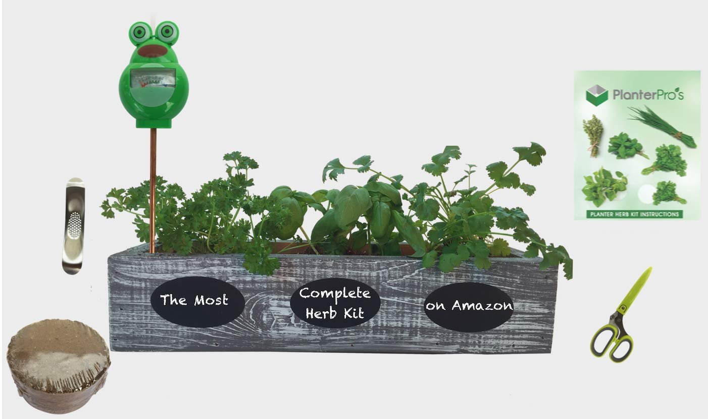 Complete Herb Garden Kit - Cedar Wood Planter, 6 Heirloom Seeds, Soil, Instructions, FREE HERB SCISSORS, GARLIC PRESS & MOISTURE METER ! (Coastal Turquoise) by Planter Pro's