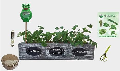 Outdoor Herb Garden Kit.Complete Herb Garden Kit Cedar Wood Planter 6 Heirloom Seeds Soil Instructions Free Herb Scissors Garlic Press Moisture Meter Coastal