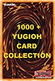 1000+ Yugioh Card Collection Including Rares and Holos