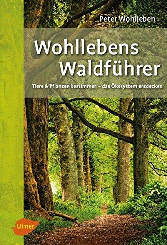 wohllebens-waldfhrer-tiere-und-pflanzen-bestimmen-das-kosystem-entdecken