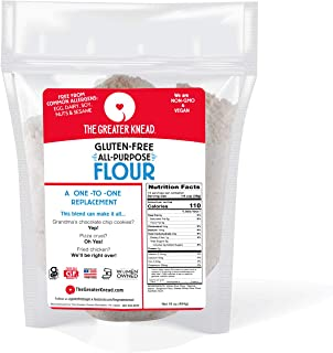 product image for Greater Knead Gluten Free All Purpose Flour - Vegan, non-GMO, Free of Wheat, Nuts, Soy, Peanuts, Tree Nuts, A One to One Replacement (1 Bags)